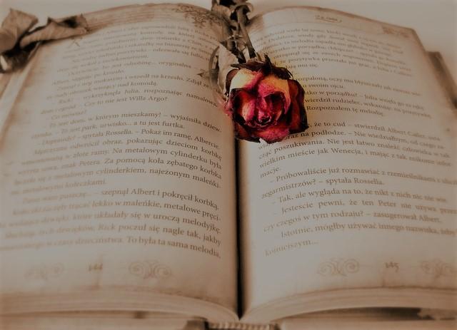 book-419589_640