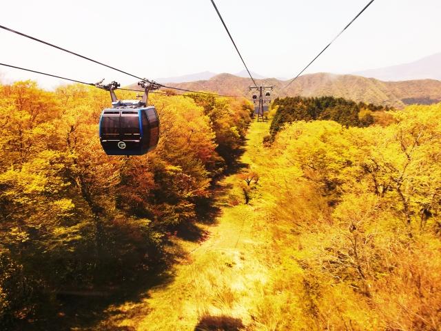 秋デートは箱根がおすすめ!カップルのための観光情報