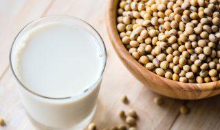 beans-beverage-bowl-1136758
