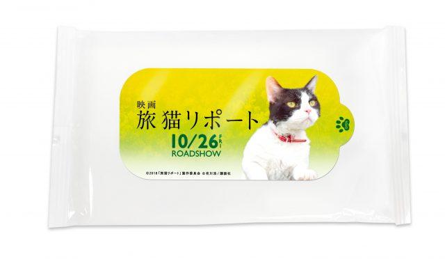 ©2018「旅猫リポート」製作委員会 ©有川浩/講談社