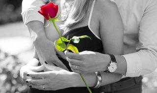red-rose-1461043_640