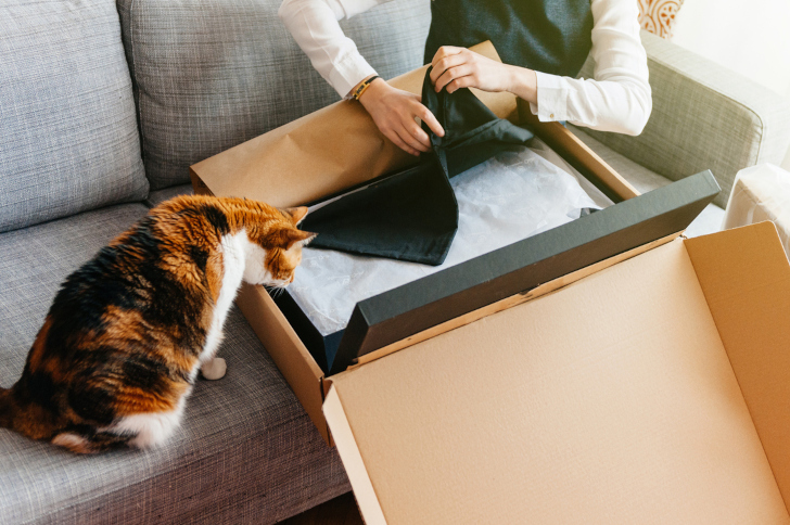 Cat and Woman unpacks unboxing new parcel containing fashion clothes